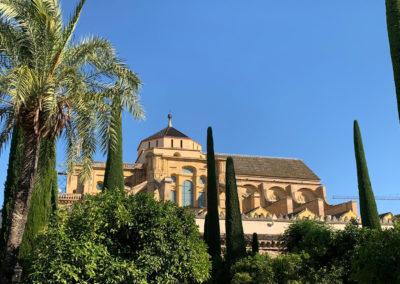 Cordoba Mágica. Mezquita-Catedral